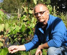 Det tar många år att experimentera  som vinodlare innan man hittar rätt  arbetsprocess för att få fram bästa  tänkbara vin.