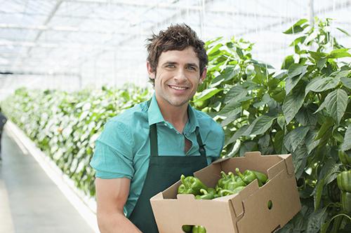 Guide för att anställa ungdomar och säsongsarbetare