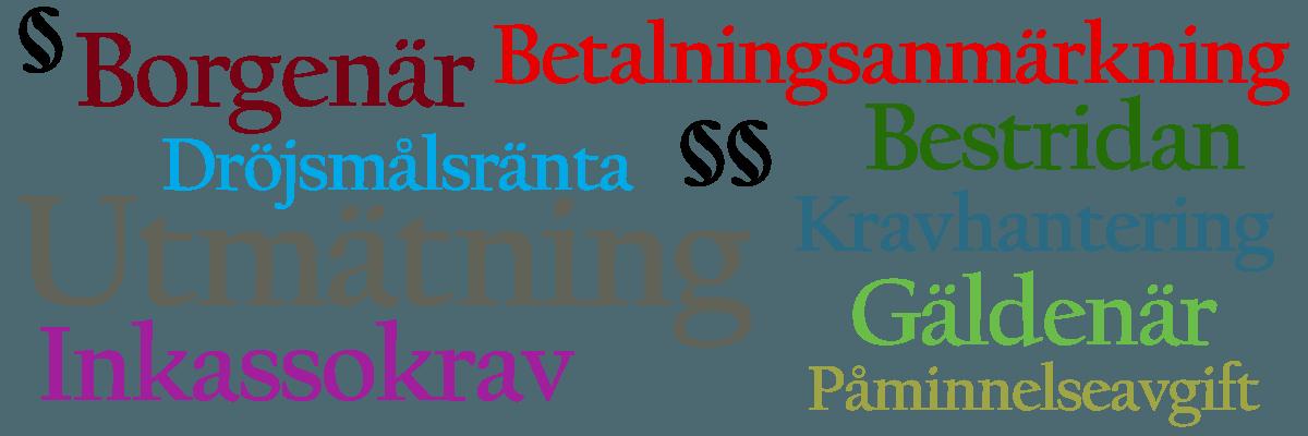 Ordlista för betalningstjänster